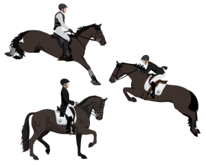 Eventing Sports