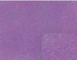 purple splatter paint background pattern