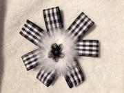 black and white checkered ribbon