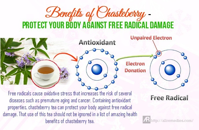 17 Health Benefits of Chasteberry Herb and Tea
