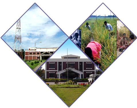 Bangladesh Open University BEd Exam Routine 2014 Bou.edu.bd