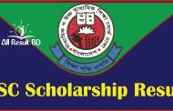 SSC Scholarship Result 2017 Bangladesh All EDU Board