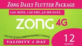 zong daily flutter package