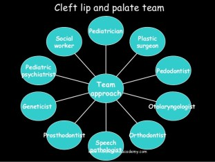 cleft palate team