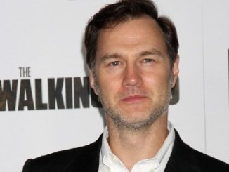 Actor David Morrissey photo