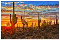 Arizona Summers Wreak Havoc on Doors and Windows