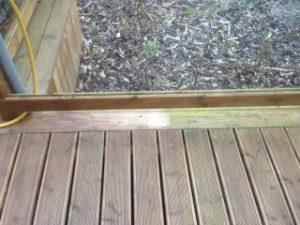 Algea Moss & Mildew Remover