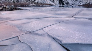 ice in Convict Lake at dawn