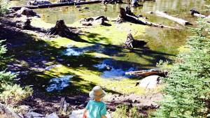 Exploring Green Lake