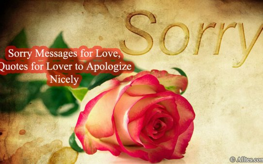 Sorry Messages for Love