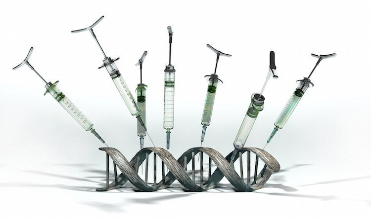 Genetically Modified Humans: 4 Kinds We Can Now Create