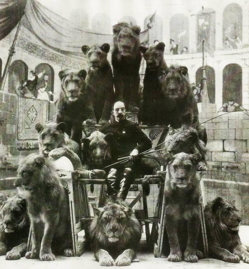 Jack Bonavita And Lions