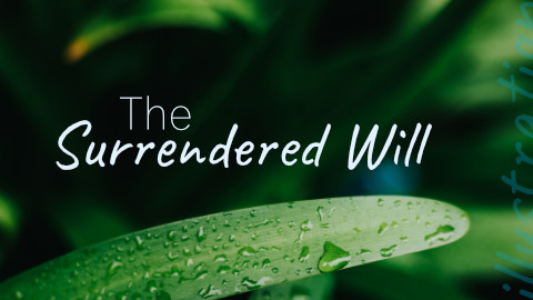 The Surrendered Will