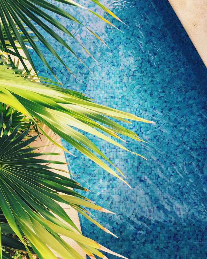 My Event Deck features tropical concepts, represented by this pool with palm leaves