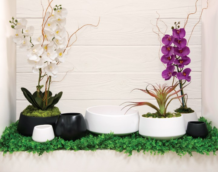 White and purple orchids in white and black vessels