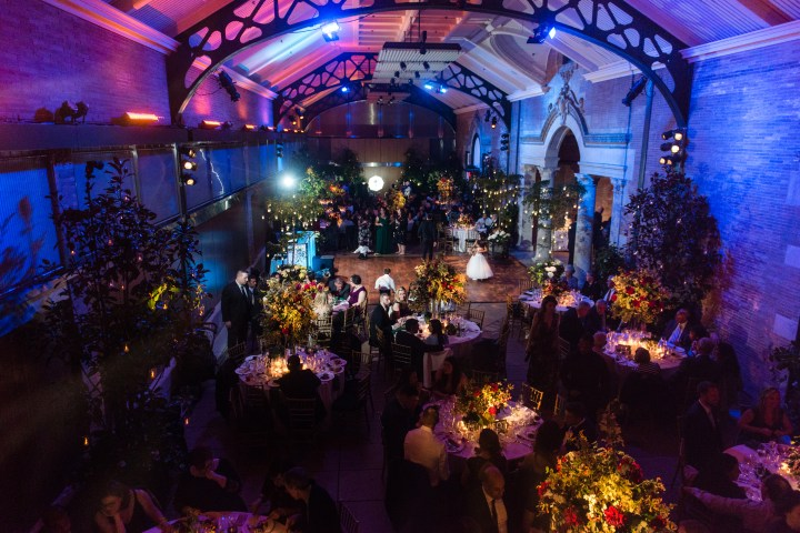 Wedding at Schiff Hall within Wildlife Conservation Society