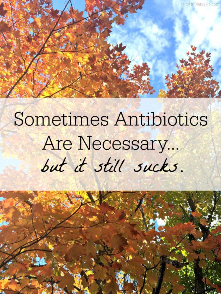 Antibiotics All The Nourishing Things main