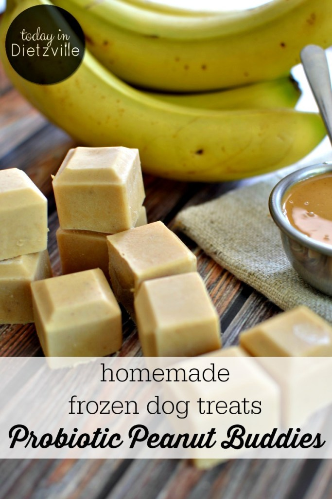 Probiotic Peanut Buddies {homemade frozen dog treats!}