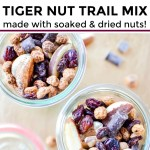 collage of two images of paleo tiger nut trail mix with text overlay between the images