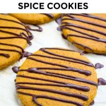 paleo anti-inflammatory spice cookies with black and white text overlay