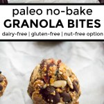 collage of 2 images of paleo no-bake granola bites with text overlay between the images