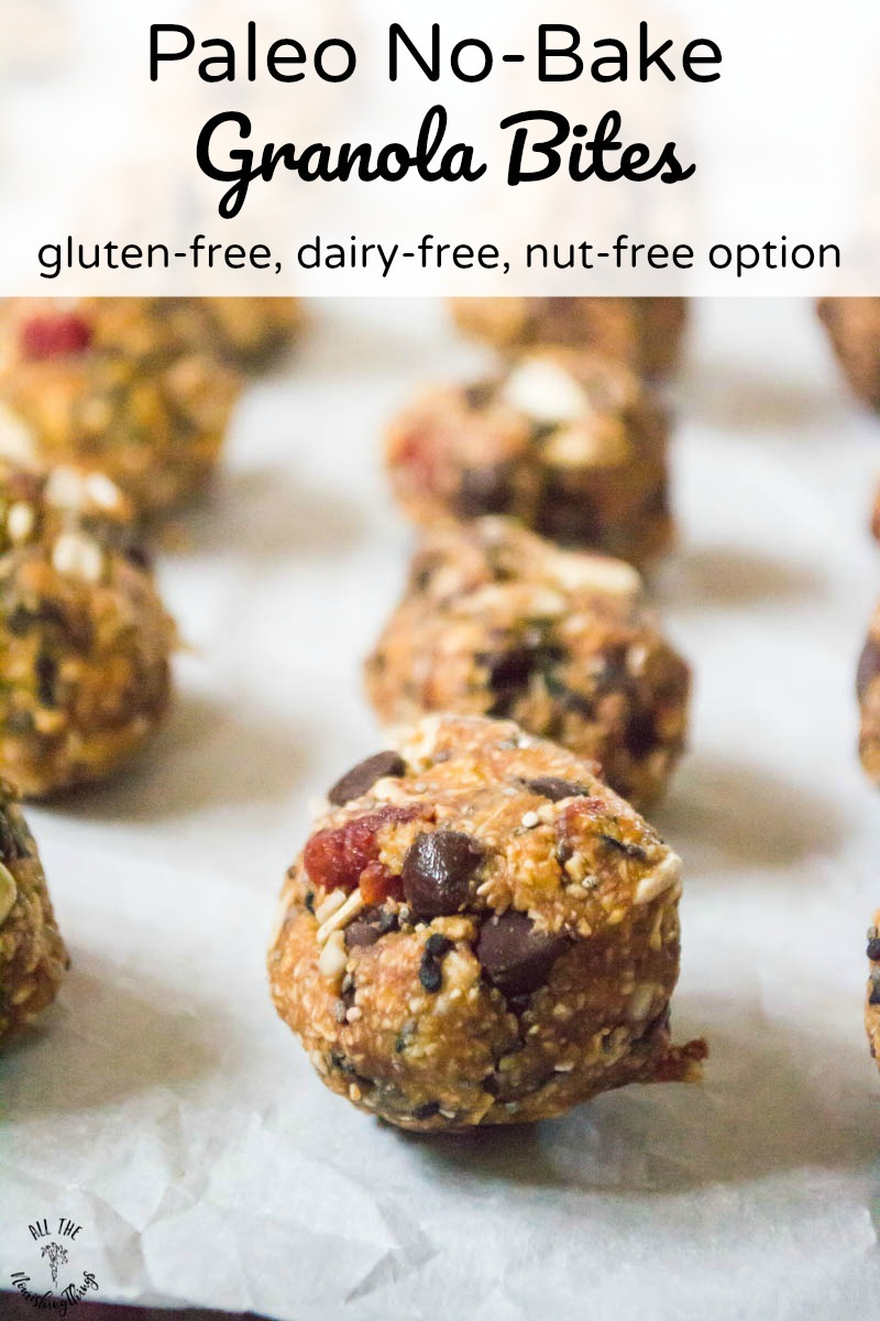 close-up image of paleo no-bake granola bites with text overlay