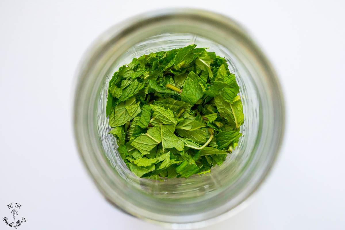 chopped fresh peppermint in half-gallon jar