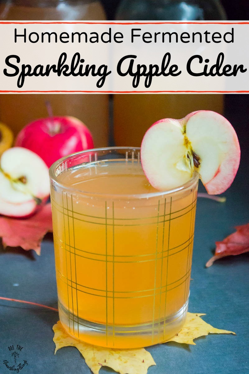 glass of homemade fermented sparkling apple cider with text overlay