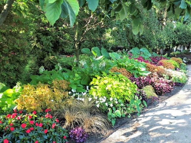 Flowers and green plants border a sidewalk