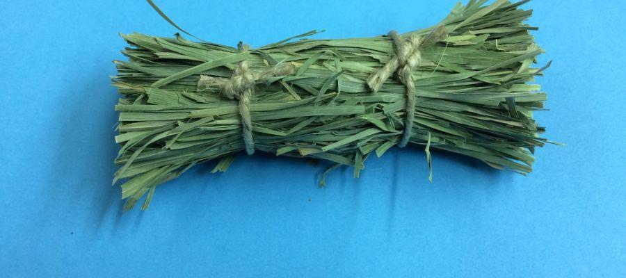 Isopod Connection Ochard Grass Bale