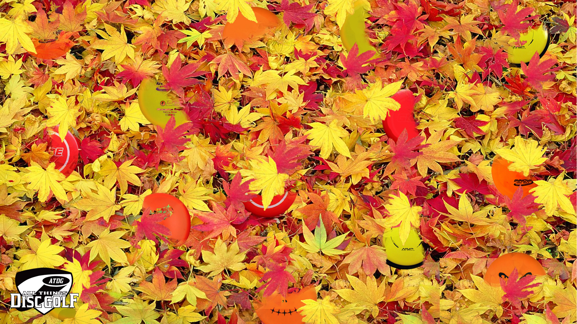 Facebook Wallpaper Fall Colors Disc Golf Backgrounds November 2014 All Things Disc Golf