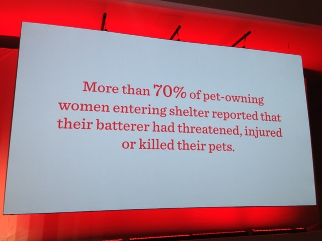 Domestic abuse and pets