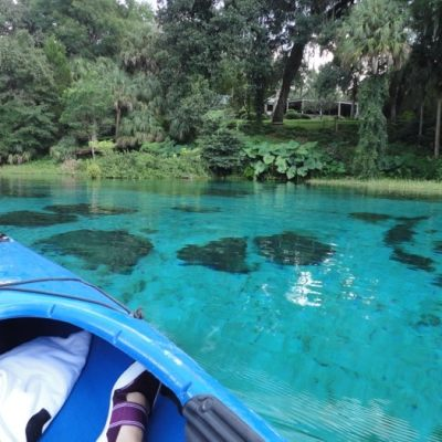Field Trip Friday: More to Florida than Disney