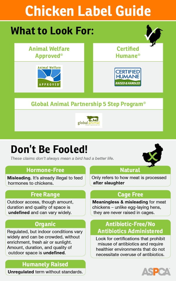 chicken-label-guide