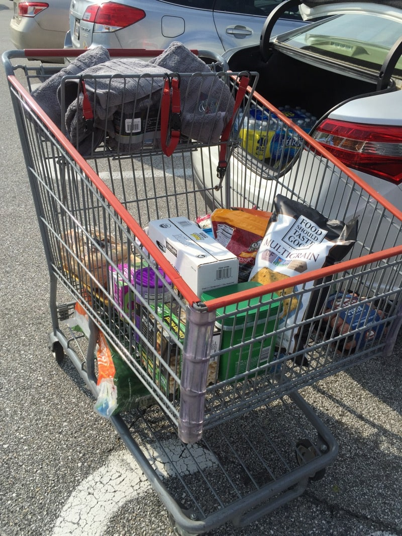 Overflowing Costco cart