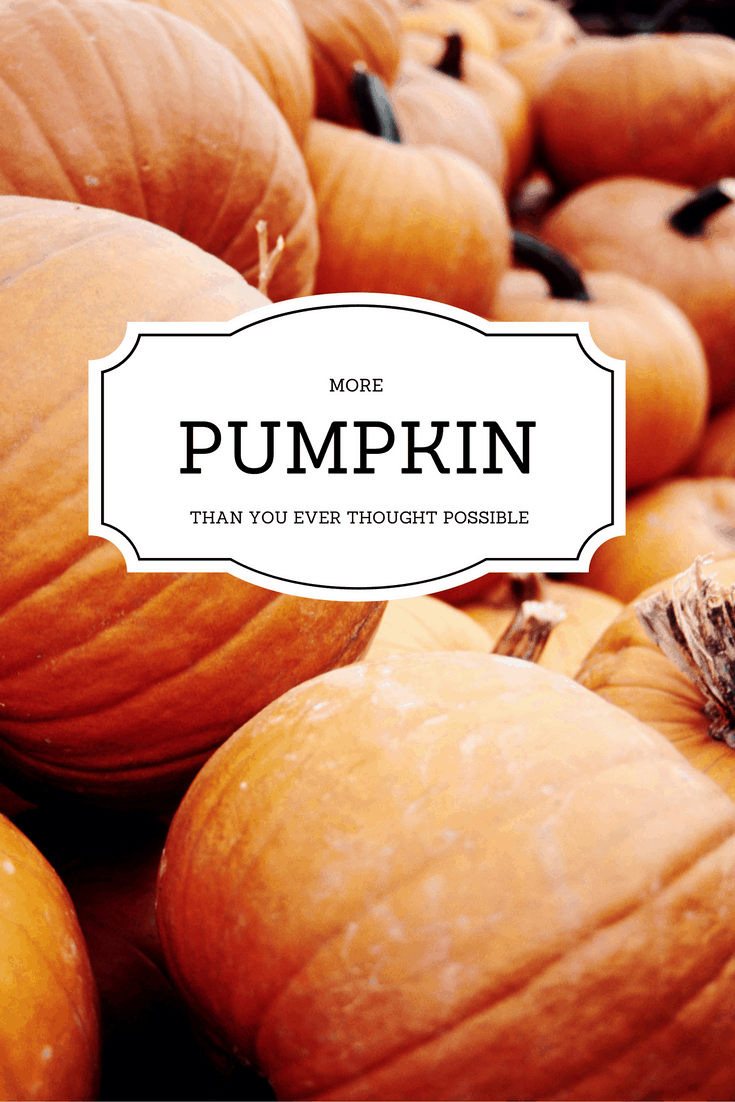 more PUMPKIN PRODUCTS