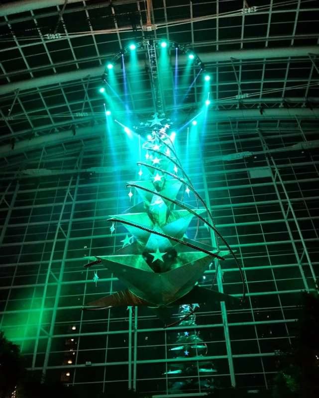 Gaylord Atrium tree