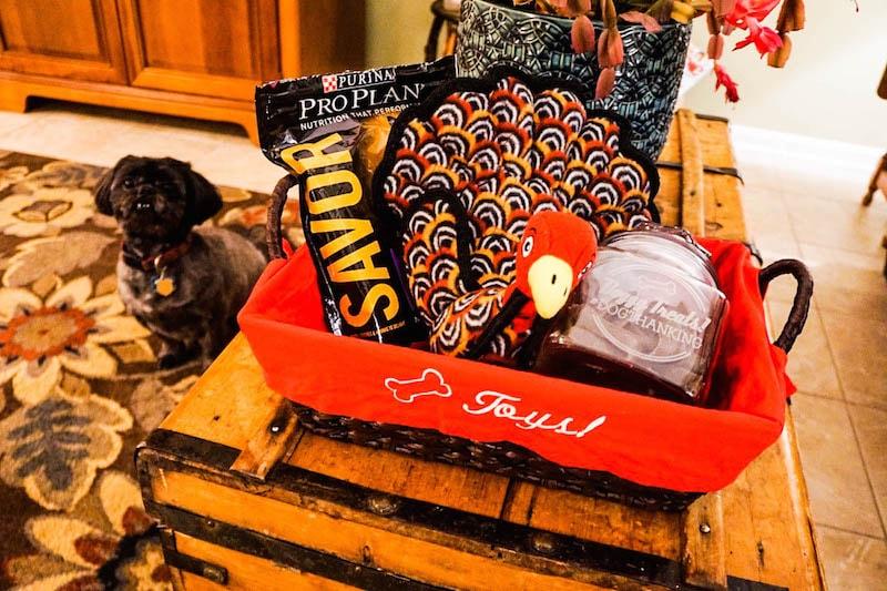 dogthanking-basket