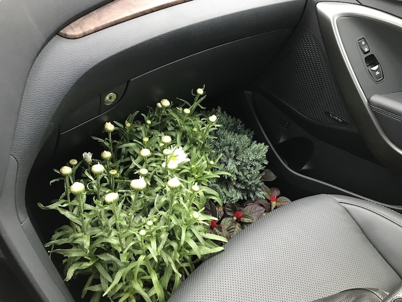 Hyundai Santa Fe - make room for plants