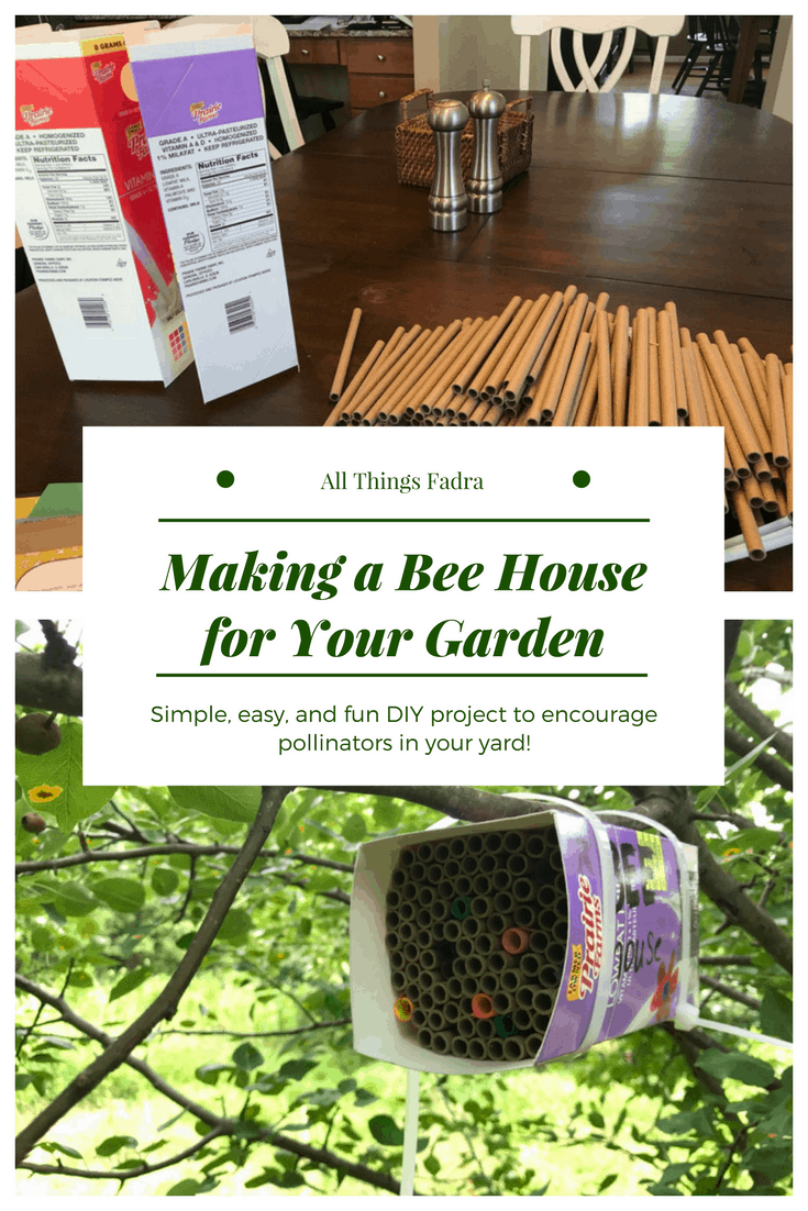 Making a Bee House for Your Garden