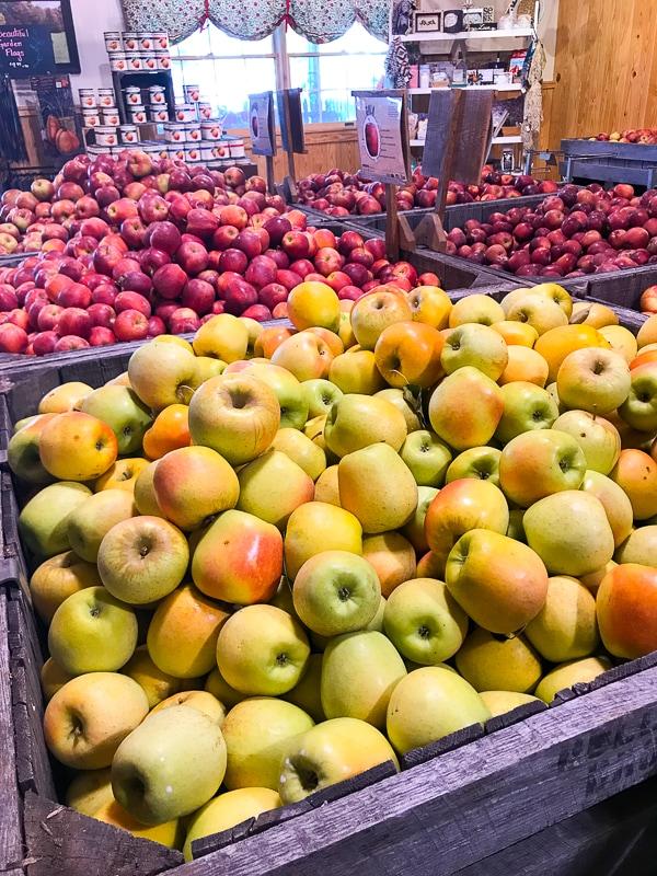 Apples at Hollabaugh