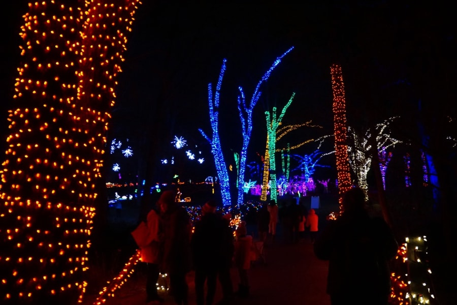 Meadowlark Winter Walk of Lights