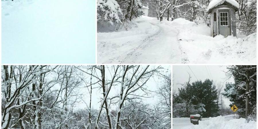 Snowy Springville