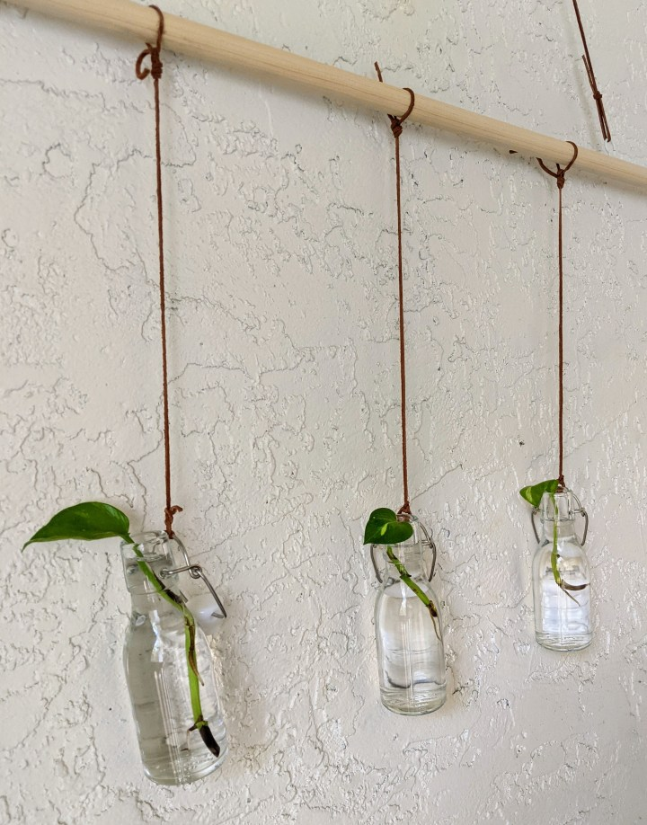 Plant Propagation Station DIY