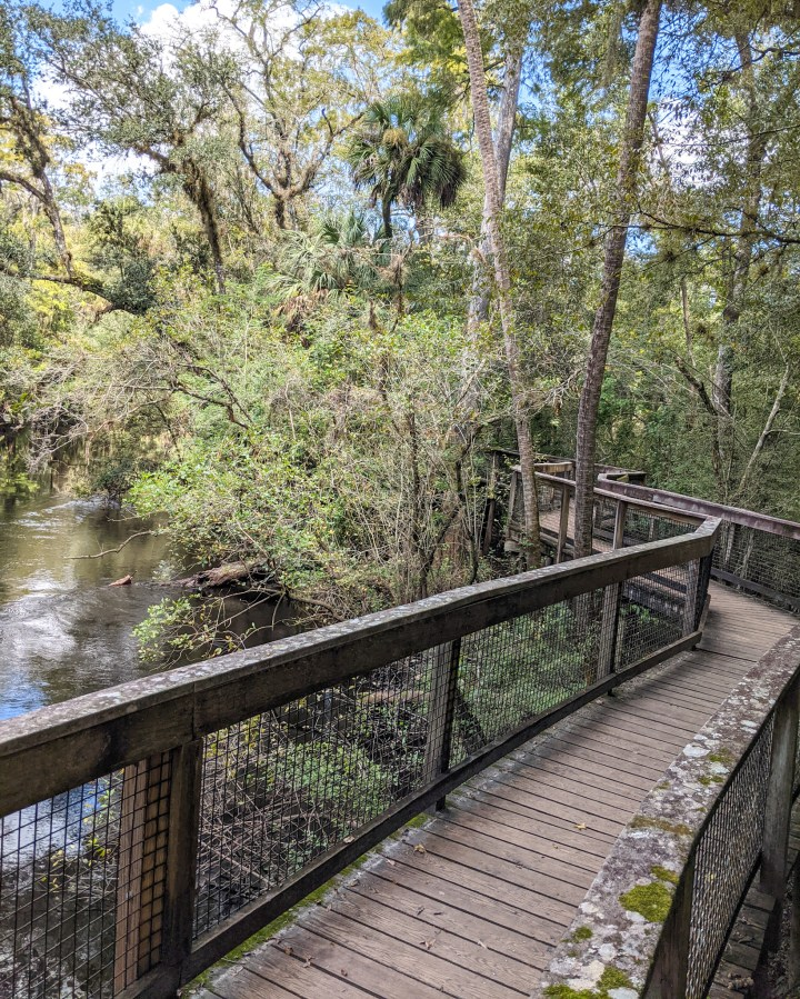 Hillsborough River State Park - Rapids Trail