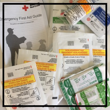 Contents of the Saddle Pouch Bike First Aid Kitfrom SJ-works