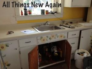 kitchen before_sunflower cabinets