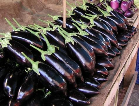long eggplants P1010074 (1)