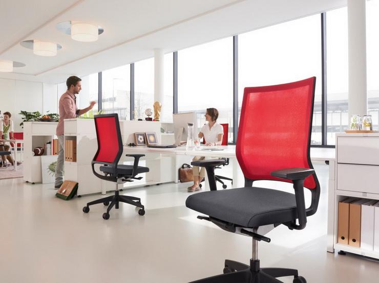 Ergonomic Office Design