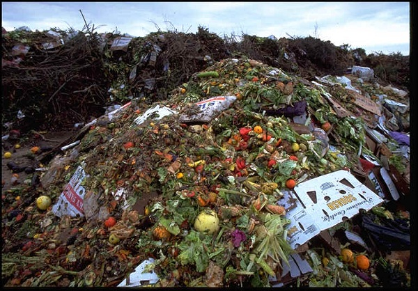 The US Throws Away 2011, 216lbs of Food